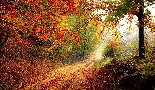 Príroda je krásna a mnohostranná