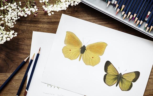 papír s motýlky
