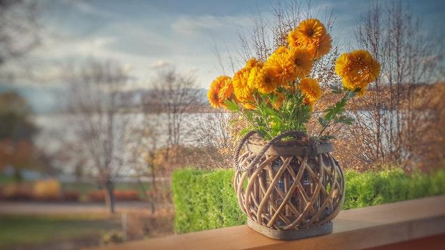 Váza z prútia s oranžovými kvetmi položená na drevenom balkónovom zábradlí